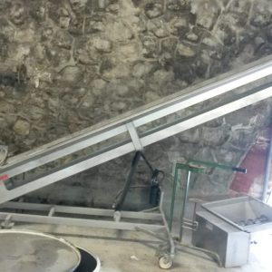 cinta elevadora Bucher Delta R segunda mano